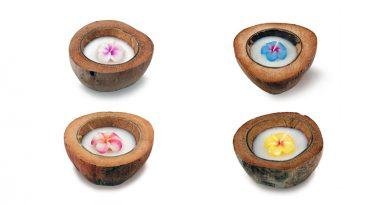Coconut Scented Frangipani Candle