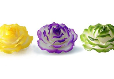 White Rose Scented Candle Dip Color
